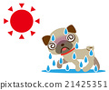 酷热 狗狗 狗 21425351