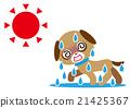 酷热 狗狗 狗 21425367