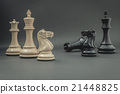 Black and White King and Knight of chess . 21448825