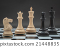 Black and White King and Knight of chess . 21448835