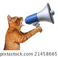 Cat Announcement 21458665