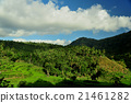 bali, country, countryside 21461282