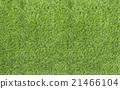 Large Green Grass texture 21466104