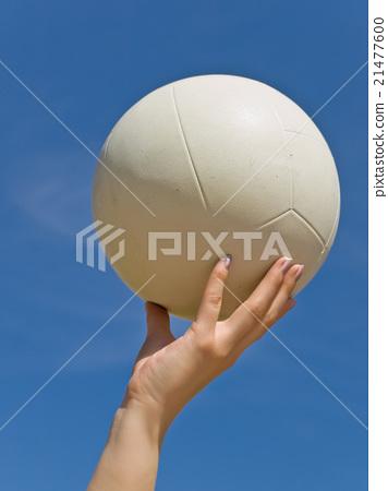 Volleyball 21477600