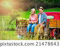 Senior couple sitting in pickup truck, apple 21478643