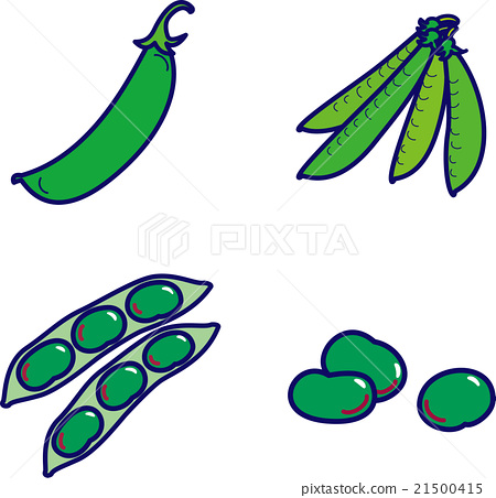 Spring vegetables, beans, snap beans, squid 21500415