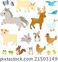動物 一組 插圖 21503149