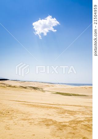 One Tottori dune cloud in the blue sky 21504959