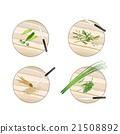 Garlic Chives, Water Mimosa, Okra and Fingerroot 21508892