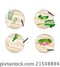 Chinese Broccoli, Rainbow Swiss Chards, Leek 21508894