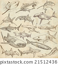 Sharks - An hand drawn pack. Freehand sketching. 21512436
