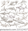 Sharks - An hand drawn pack. Freehand sketching. 21512437