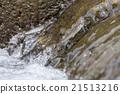 逆流而上 追溯 香魚 21513216