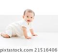 嬰兒 寶寶 寶貝 21516406