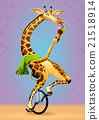 Funny giraffe on an unicycle 21518914