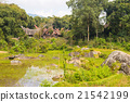 Traditional Toraja village in idyllic landscape 21542199