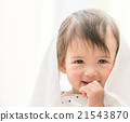 可愛的嬰兒系列 21543870