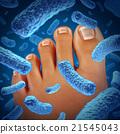 Foot Bacteria 21545043