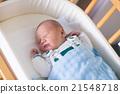baby, newborn, cot 21548718