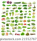 vegetable on white 21552767