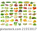Vegetable collection  21553017