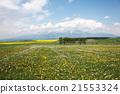 slovakia, slovakian, nature 21553324
