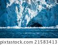 Bird flying into ice cave in glacier 21583413
