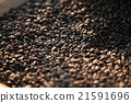 Drying coffee beans 21591696
