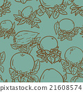 Various tropical citrus fruits 21608574