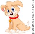 Cute Dog 21612903