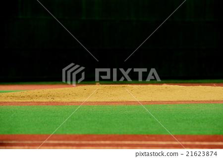 baseball 21623874