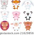 Animal Set 21629856