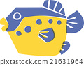 blowfish, puffer fish, puffer 21631964
