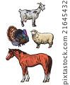 農場動物 插圖 配圖 21645432