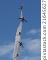 藍色衝擊波 機場秀 天空 21645627