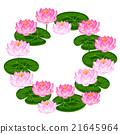 花朵 花 花卉 21645964
