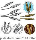 grain icon 21647967