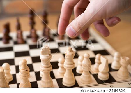 체스 21648294