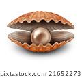 珍珠 外殼 殼 21652273