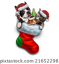 Pet Holiday Stocking 21652298