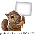 Squirrel Holding A Sign 21652827