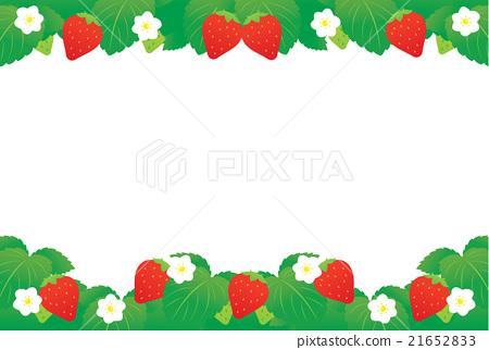草莓 21652833