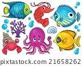 Coral fauna theme image 1 21658262