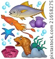 Ocean fauna topic set 2 21658275