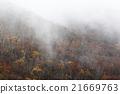 autumn, autumnal, mountain 21669763