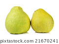 pomelo fruit isolated on the white background 21670241