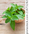 Closeup fresh peppermint  leaves. 21673282