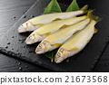香魚 淡水魚 魚 21673568