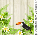 flower toucan bird 21680187