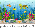 Illustration of underwater landscape with turtle 21690620